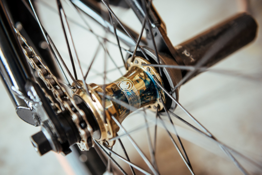 arthur-bike-check-2016 (1)